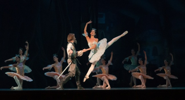ballet dancer colour don quixote